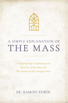 A Simple Explanation of the Mass